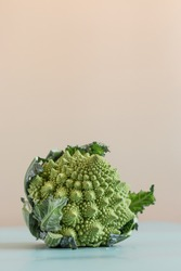 creative layout with romanesco cauliflower on pastel background ,hard light photo