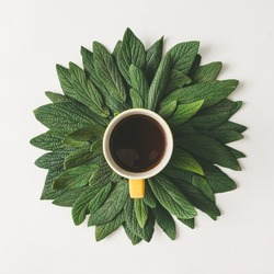 Creative minimal arrangement of green leaves and cup of coffee or tea. Nature concept. Flat lay.