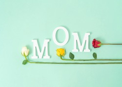 Creative  mom word made of white letters and colorful rose flowers on mint green. Trendy mothers day flat lay composition.