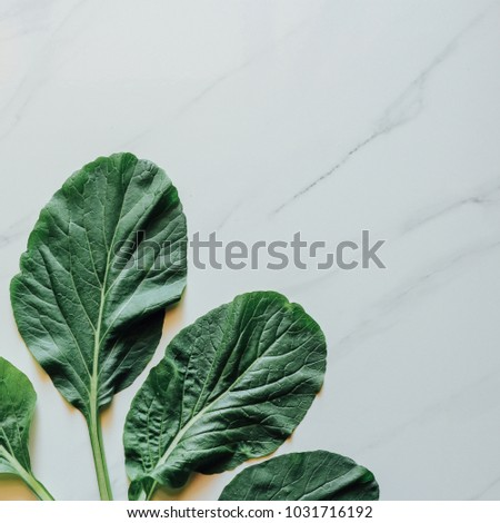 Creative nature layout made of tropical leaves and flowers. Flat lay. Summer concept. #1031716192