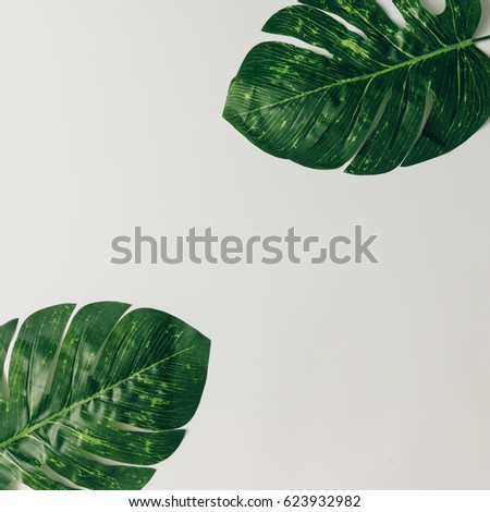Creative nature layout made of tropical leaves. Flat lay. Summer concept. #623932982