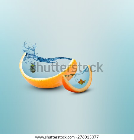 Creative orange fruit slice aquarium photo manipulation/Juicy orange fruit slice/Creative design #276015077