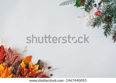 Creative season layout of colorful autumn and winter leaves and branches. Nature mockup background. Seasonal concept. Flat lay