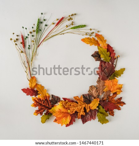 Creative season layout of colorful autumn leaves and branches. Nature mockup background. Seasonal concept. Flat lay wreath.