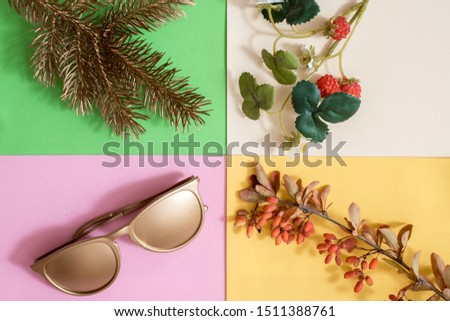 Creative season layout of summer, spring, autumn and winter leaves and flowers. Christmas fir tree, summer sunglasses, spring flowers,autumn fruits of barberry.four colors.Seasonal concept. Flat lay