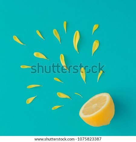 Creative summer layout made of lemon and yellow flower petals on bright blue background. Fruit minimal concept.