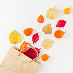 Creative Top view flat lay autumn composition Shopping bag dried orange flowers leaves background copy space Square Template sale mockup fall harvest thanksgiving halloween promotion flyers