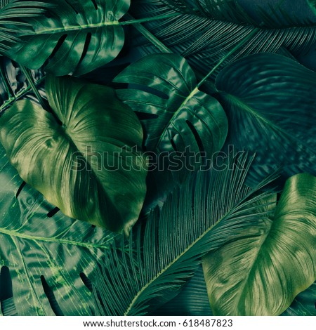 Creative tropical green leaves layout. Nature spring concept. Flat lay. #618487823