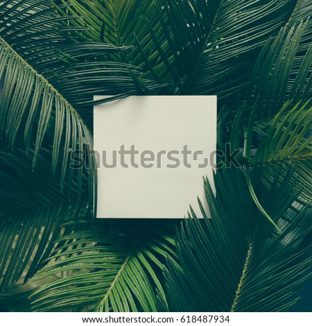 Creative tropical green leaves layout with copy space. Nature spring concept. Flat lay. #618487934