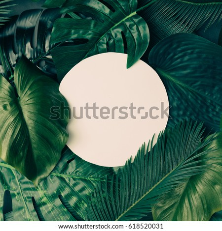 Creative tropical green leaves layout with copy space. Nature spring concept. Flat lay. #618520031