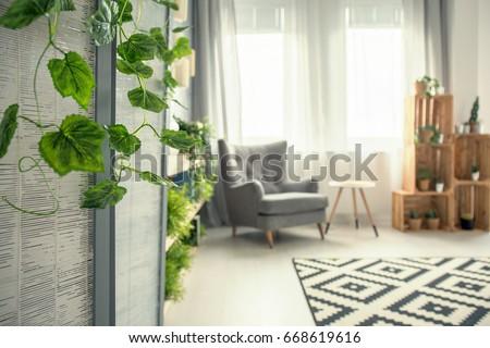 Creative view of elegant decorated stylish room