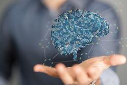 creativity idea brain human mind