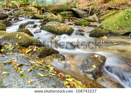 creek in mountain the deep forest