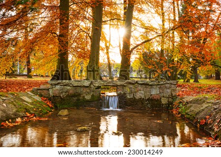 Creek in the autumnal park of Gdansk, Poland