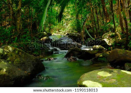 Creek in the Wilderness. It is a wilderness area located in the forest in Thailand. #1190118013