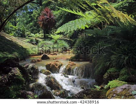 creek in tropical landscape 02