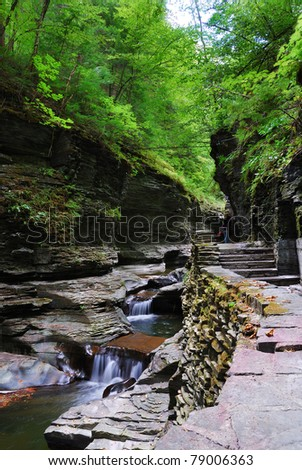 creek in woods with rocks and stream in Watkins Glen state park in New York State