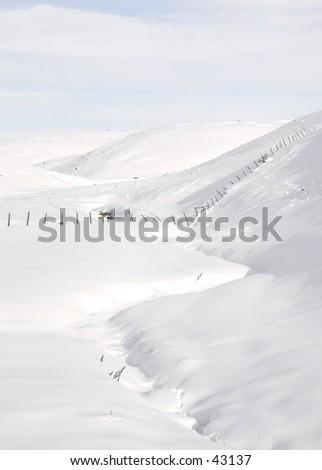 Creek through Snow Field