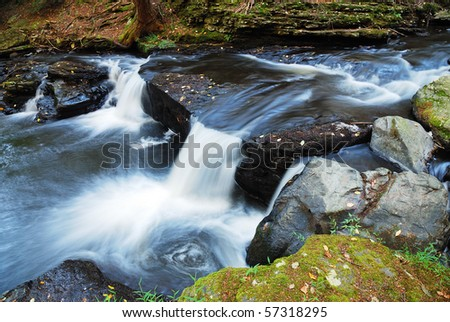 Creek with rocks and foliage.