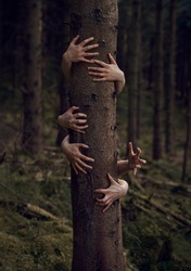 Creepy Conceptual Hands Grabbing Tree In Horror Forest