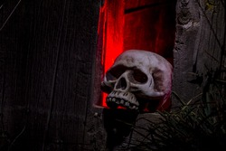 Creepy Halloween skull bones sitting in hole in old abandoned wood building lit with red light
