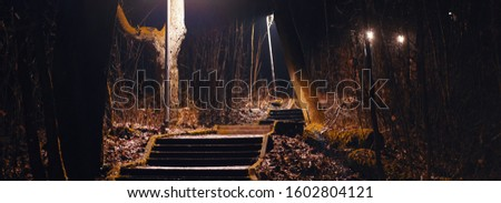 Creepy illuminated stairways in the forest at night