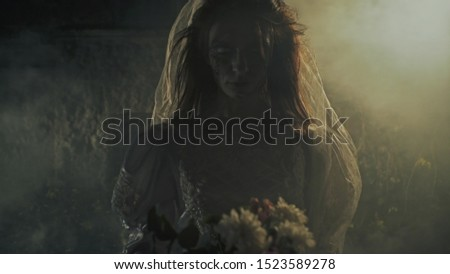 Creepy lone bride standing on the road before the car at night