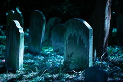 Creepy old cemetery in the night. Horror mysterious burial scenery. Blue moonlight on graves and grass. Scary dark background. Close-up image.