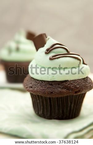 Stock Photo Creme De Mint Cupcake, shallow depth of field