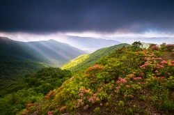 Crepuscular light rays bursting out from under heavy cloud cover over the spring mountain laurel bloom at Craggy Gardens along the Blue Ridge Parkway in western North Carolina.