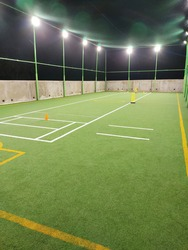 Cricket Arena with artificial green grass