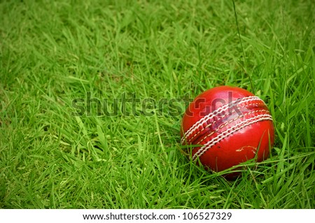 cricket ball on green grass pitch with copy space