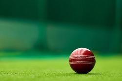 Cricket ball on Green Turf