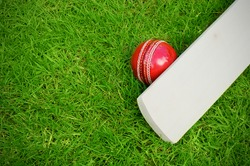cricket bat and ball on green grass pitch with copy space