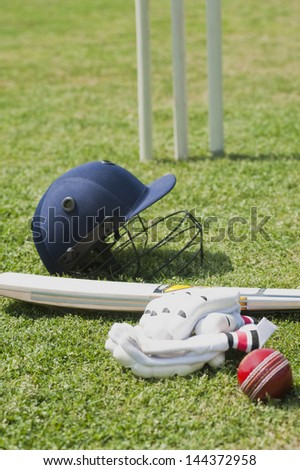 Cricket batting gears in a field
