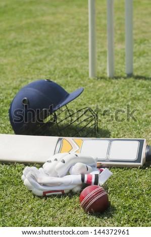 Cricket batting gears in a field