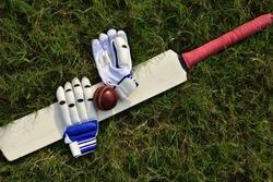 Cricket gloves and bat on green grass