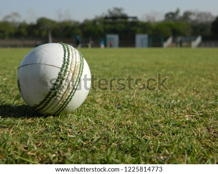 Cricket ground game #1225814773