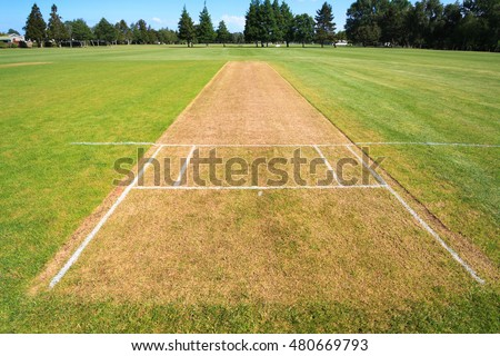 Cricket pitch, sport field