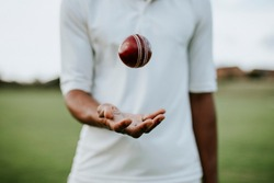 Cricket player ready to throw the ball