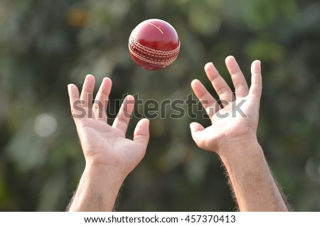 Cricket player tending to catch ball. Stock foto ©