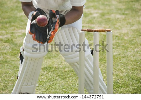 Cricket wicketkeeper catching a ball behind stumps
