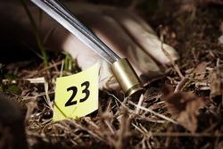 Crime scene investigation - pistol cartridge