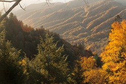 Crisp Fall morning in the mountains