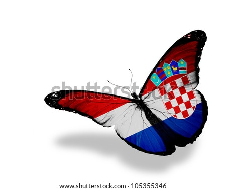 Croatian flag butterfly flying, isolated on white background - stock photo