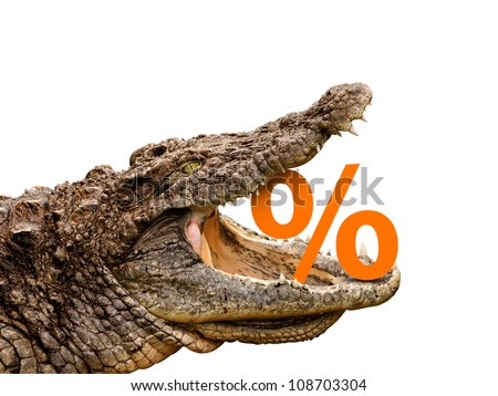 Crocodile eats percent