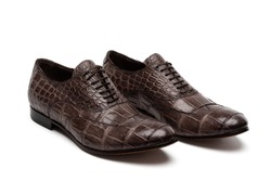 Crocodile leather dark brown male shoes isolated, white background.Сlassic pair of two balmoral bluchers oxfords. Men's formal wingtip dress shoe. Alligator classic footwear with bootlaces, side view.