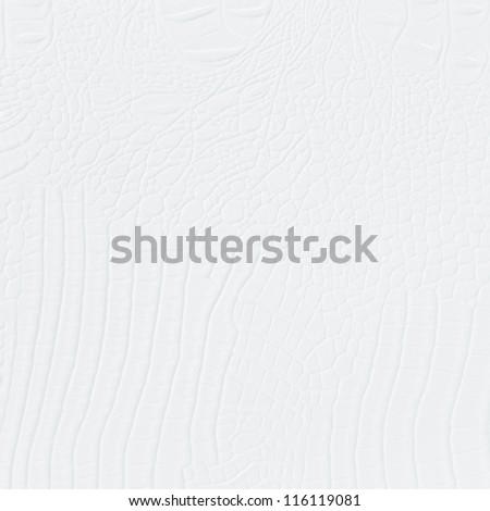 crocodile leather white - stock photo
