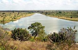 Crocodile River, Kruger National Park, South African Republic