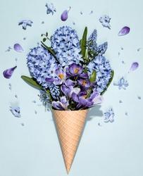 Crocus and Hyacinth muscari flower in waffle cone